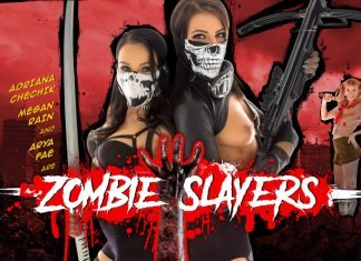 Zombie Slayers VR Porn